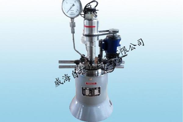 出口型常规微型反应釜