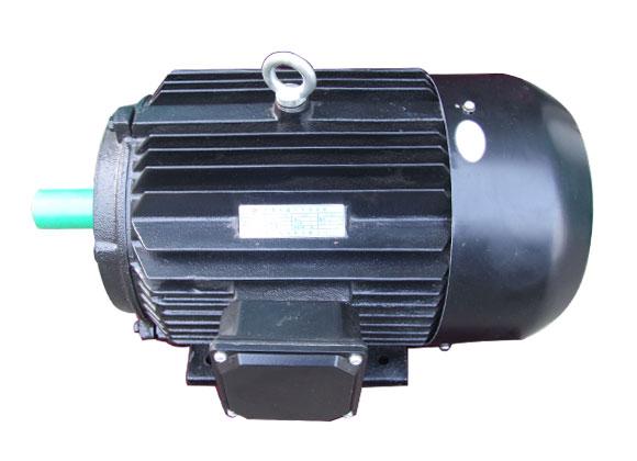 TY3系列高效永磁同步电动机