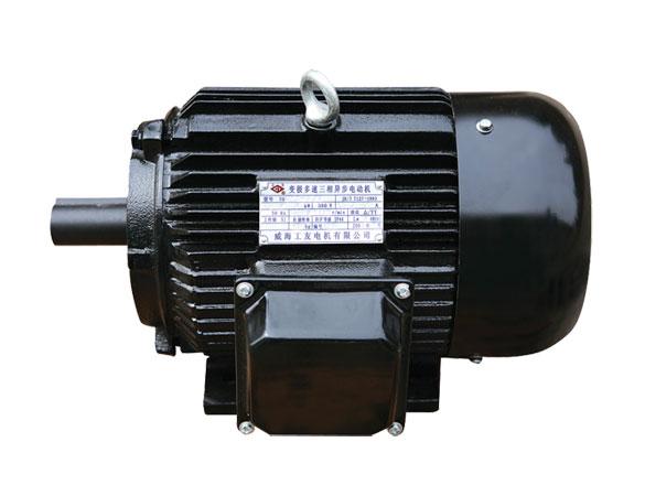YD 系列变极多速三相异步电动机