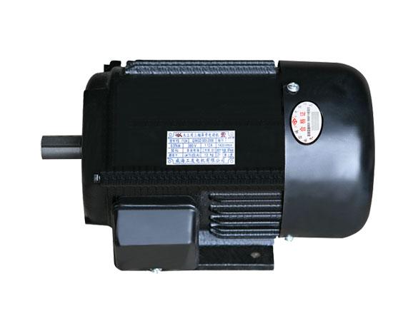 YS 系列三相异步电动机