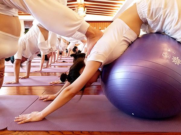 球瑜伽培训班