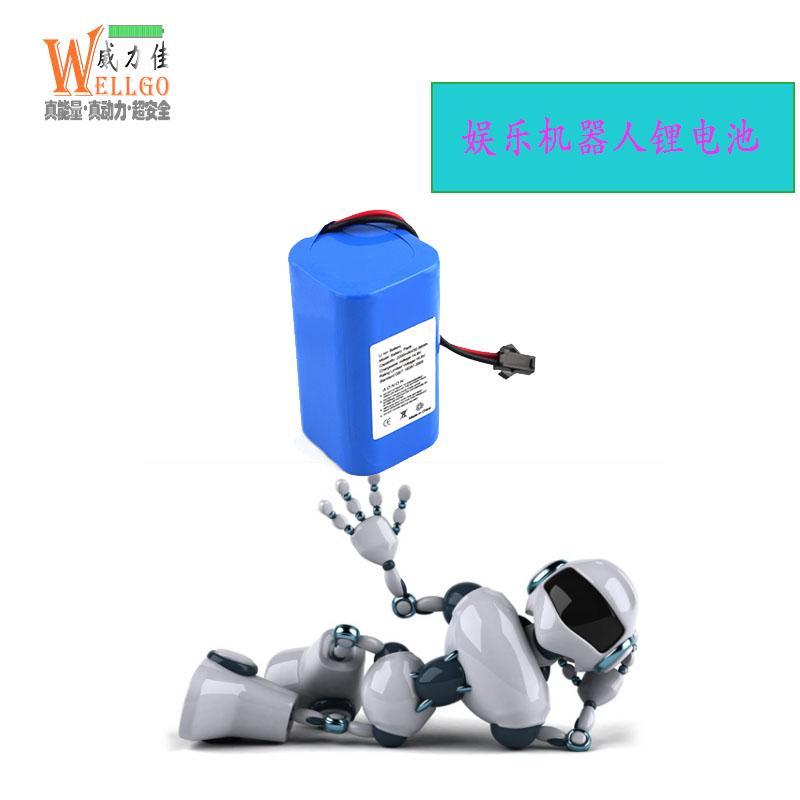 娱乐机器人电池