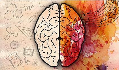 淄博首家脑波测评 专注力提升 学习能力提升 让您从心了解您的孩子