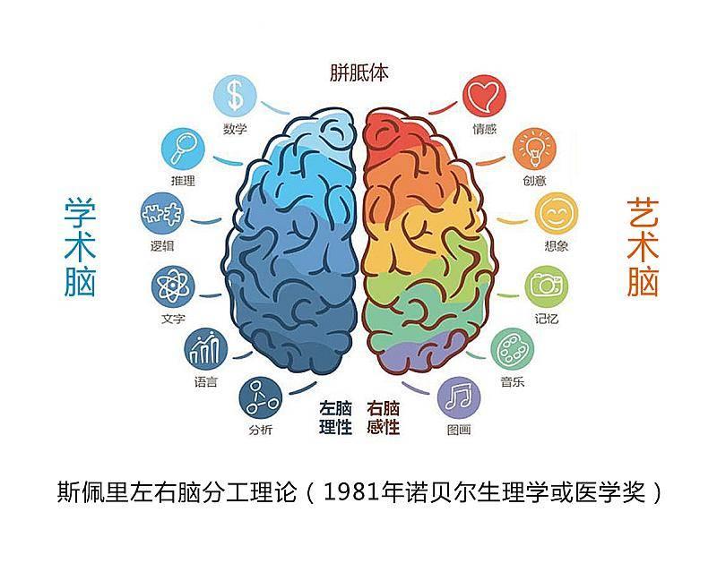 脑星人全脑潜能开发免费课程来了