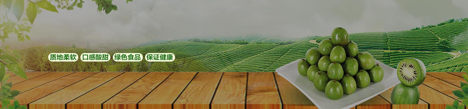 丹东软枣猕猴桃口感酸甜,保证健康。