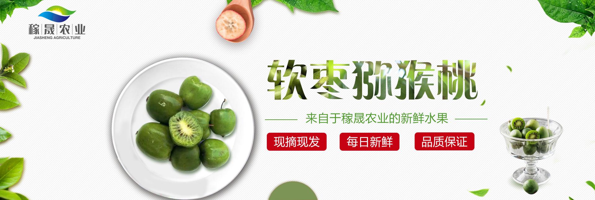公司對軟棗獼猴桃的保證