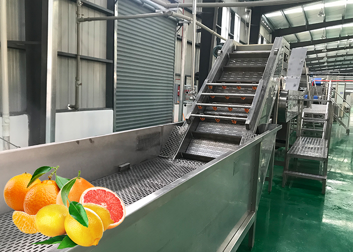Peach, apricot and plum juice processing production line