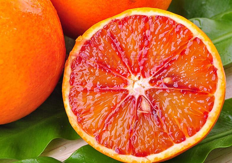 塔罗科血橙苗