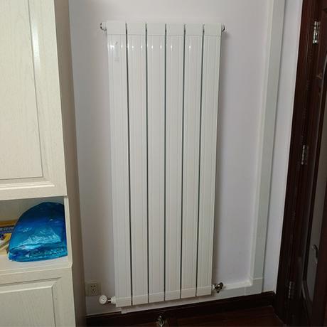 这个冬天缩手缩脚,裹饺子那样穿着还是家里安装暖气片?