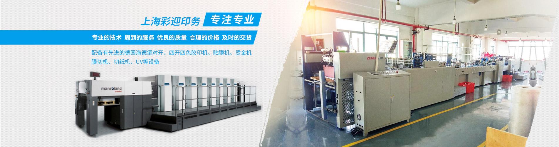 上海纸袋印刷设备