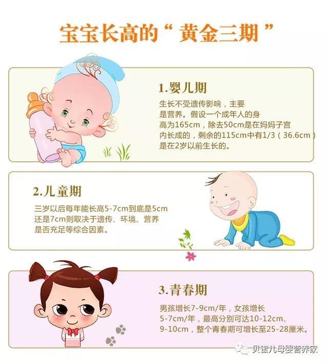 想要宝宝长高高,哪些营养素要跟上?