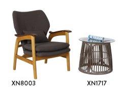 XN8003 + XN1717