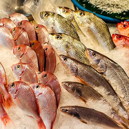 上海勇沪与您分享生鲜配送团队如何选择?