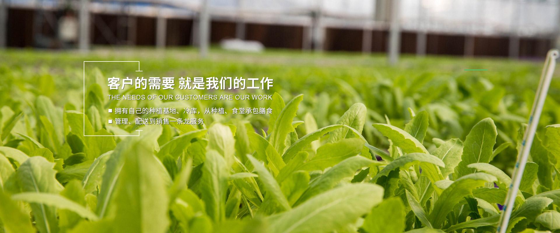上海勇沪农产品配送有限公司,农产品配送