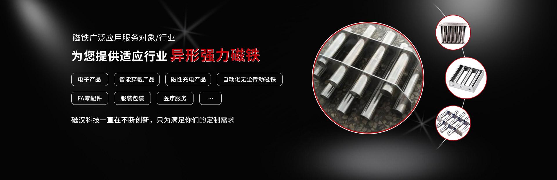 上海强磁铁公司
