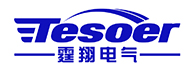 Tesoer Electric (Shanghai) Co., Ltd.