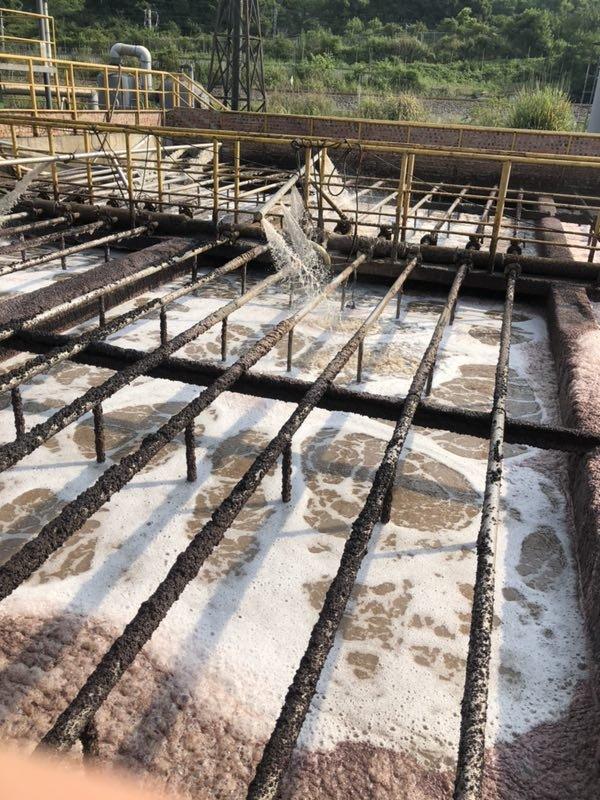 诺维信COD去除菌和氨氮去除菌助医药中间体污水厂重建生化系统