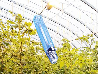 植物照明补光灯农用钠灯