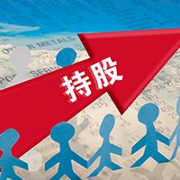 指导案例-宋文军诉西安市大华餐饮有限公司股东资格确认纠纷案