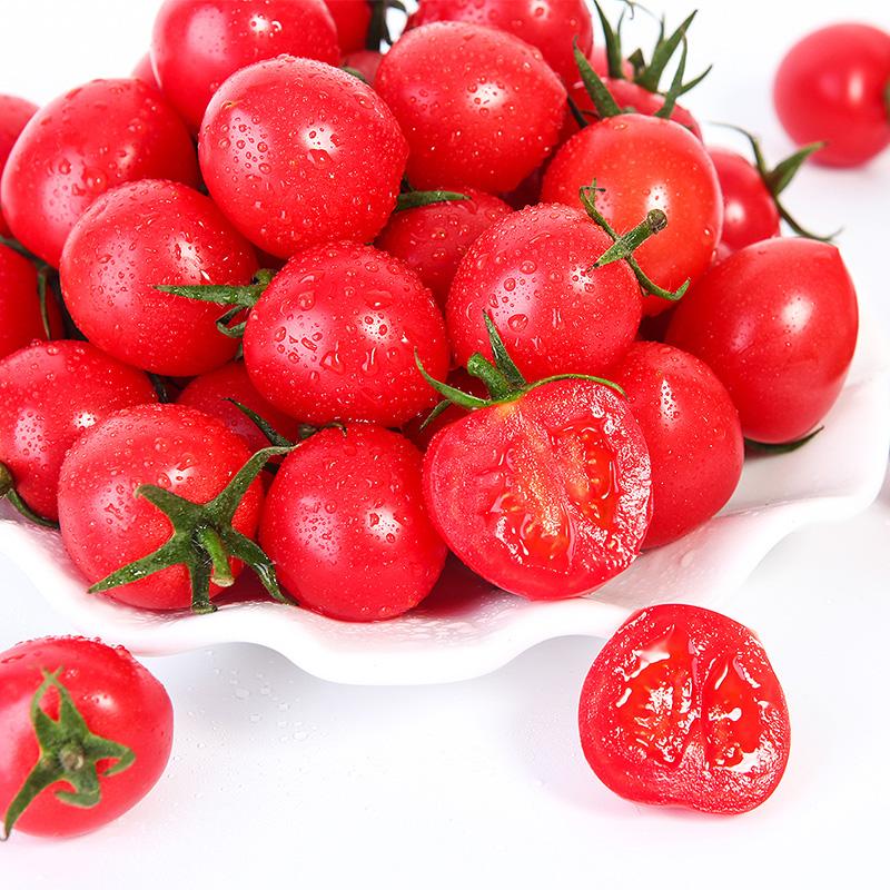 小番茄来了1
