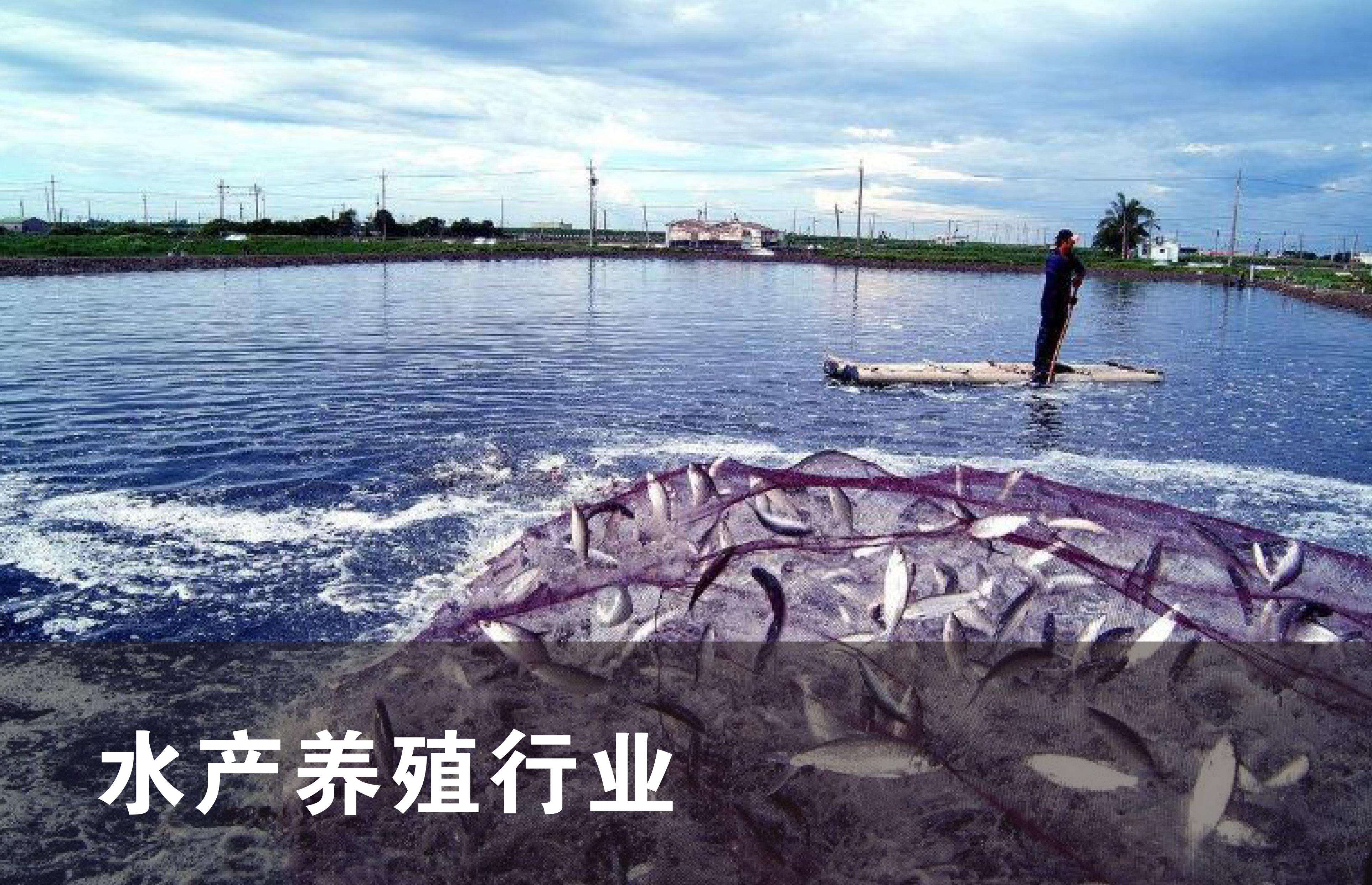 水产养殖行业