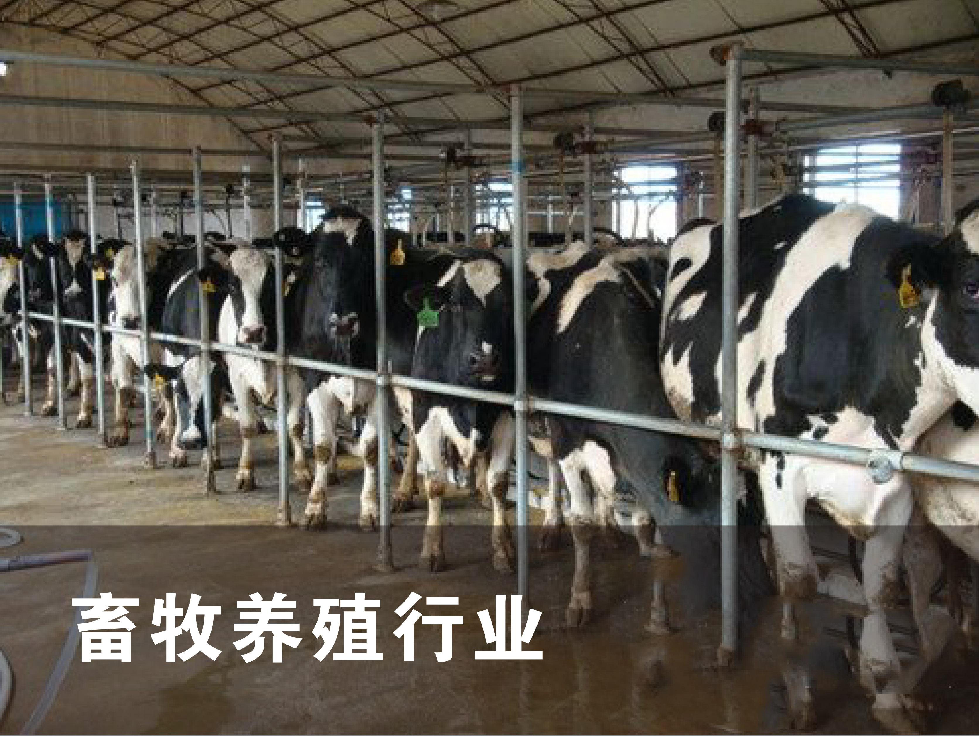 畜牧养殖行业