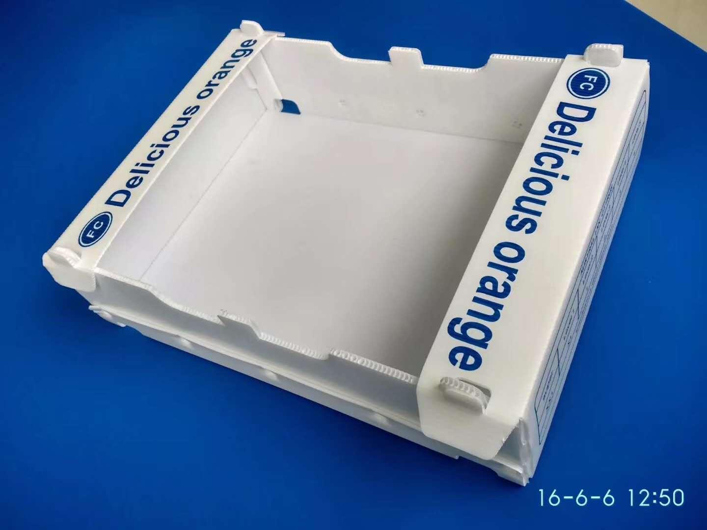 果蔬专用中空板包装箱