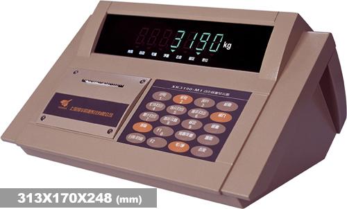 称重仪表XK3190-DM1
