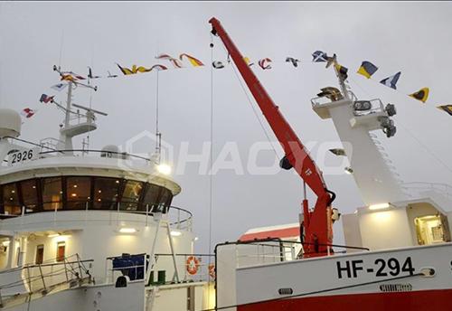 直臂船用吊机