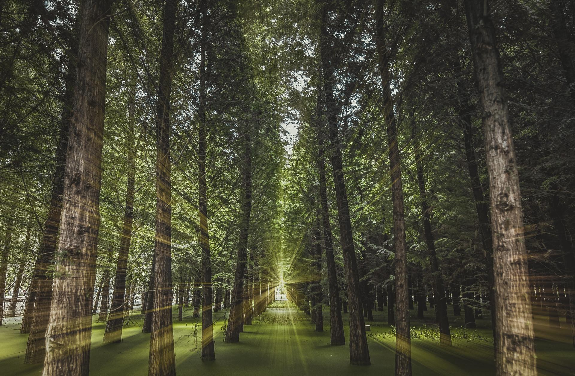 环保税开征倒计时 多地确定税额标准