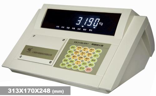 称重仪表XK3190—DS1