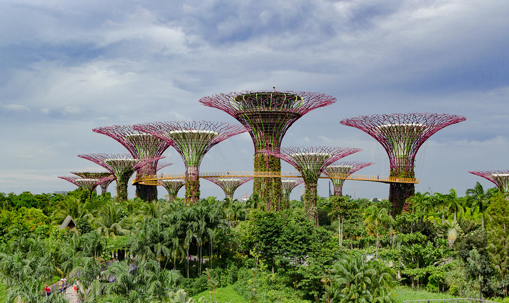 新加坡海灣花園