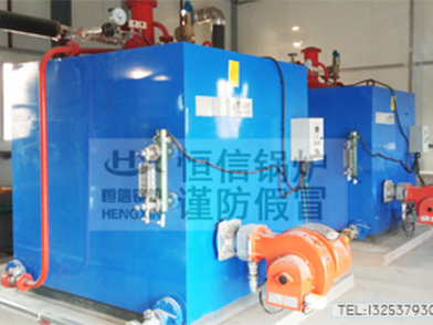 ZFQ燃气型免检蒸汽发生器