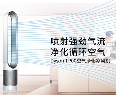 Dyson 戴森 TP00 无叶空气净化循环扇家用静音落地扇涡轮对流风扇