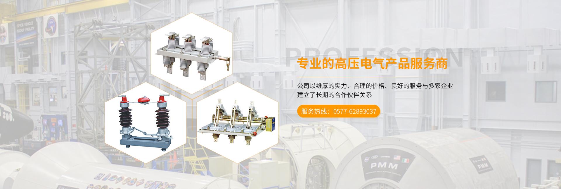 温州雷泉电气有限公司