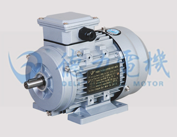 GS系列铝壳三相异步电动机