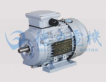 IE2系列铝壳三相异步电动机
