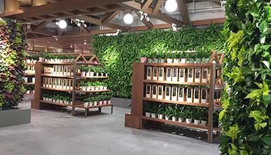 鹿岛普通生活植物墙立体绿化案例