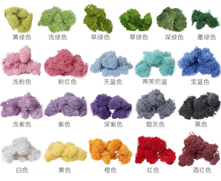 永生苔藓颜色