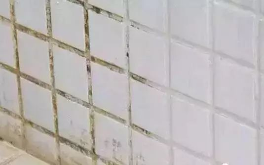 白水泥勾縫
