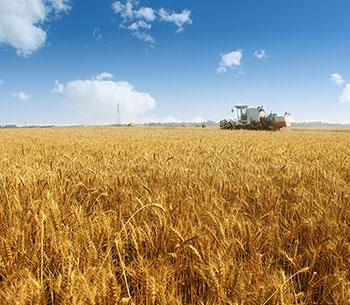 農業機械領域