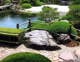 干货丨景观植物设计和绿化养护的思考