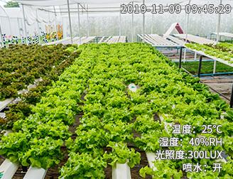 种植环境监测