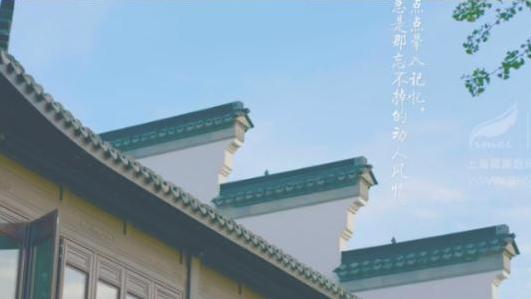 西塘越里项目招商宣传片