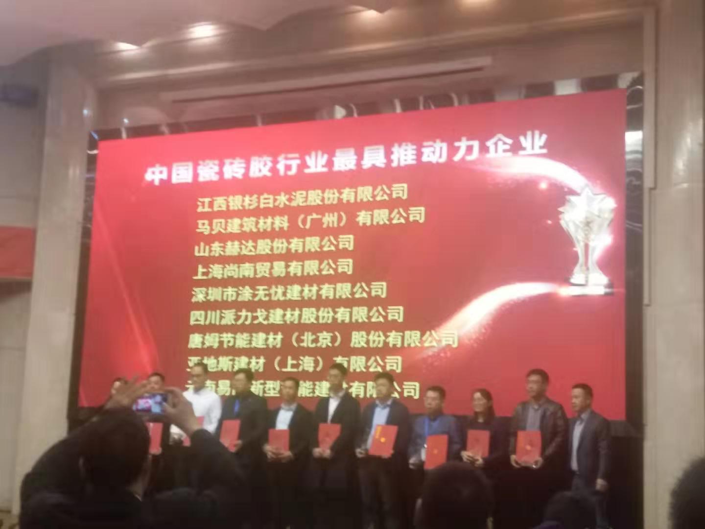 亞遊集團app下載榮獲中國瓷磚膠行業最 具推動力的企業