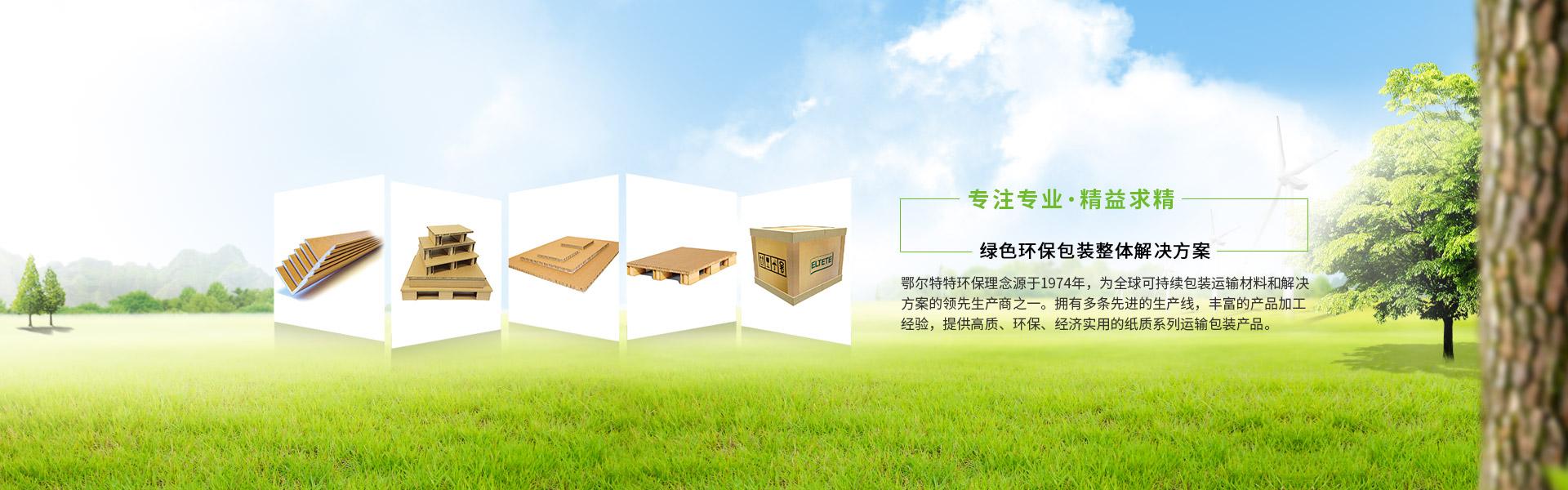 绿色环保包装整体解决方案