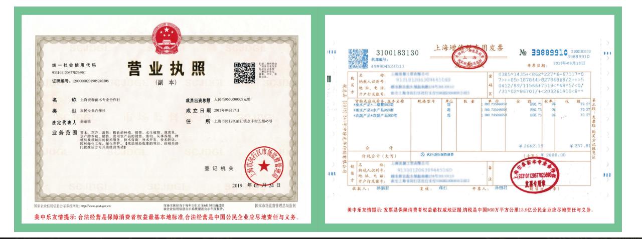 上海宏春苗木专业合作社(鱼虾蟹生态链)证照/上海增值税发票样本
