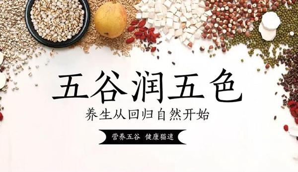 热烈祝贺澍林尔(苏州)生物科技有限公司网站成功上线!