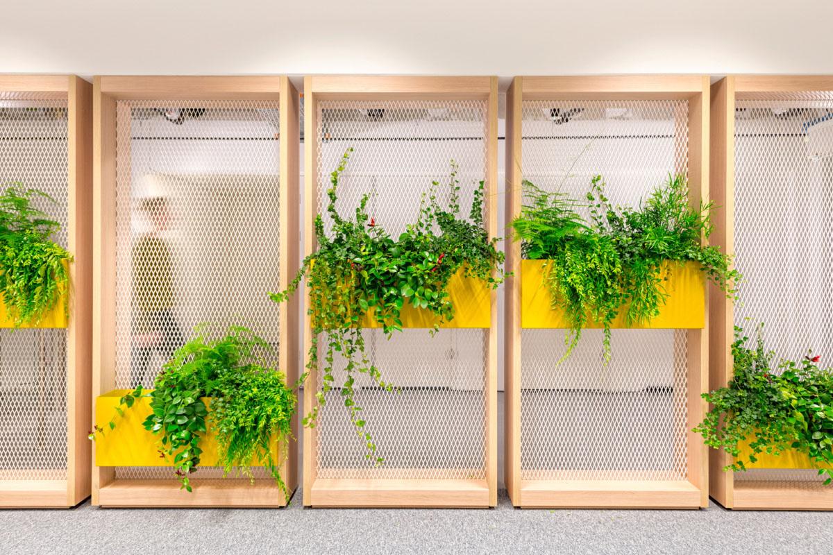绿植墙设计