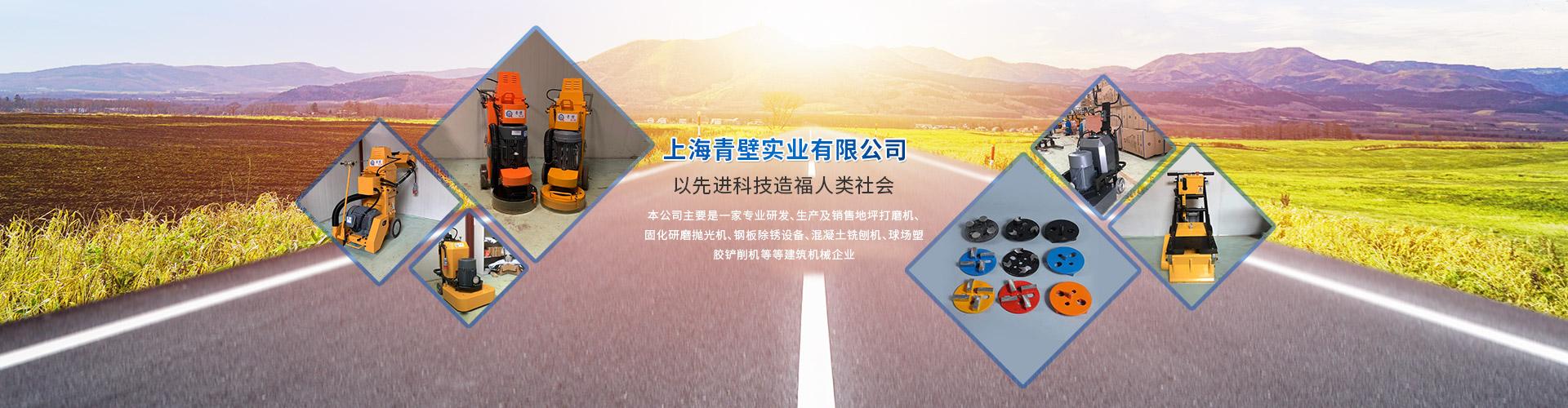 上海青壁实业有限公司